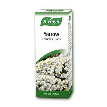 A.Vogel Yarrow Complex 50ml