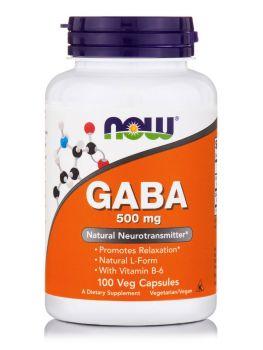 Now Foods GABA 500mg (+ B-6  2mg) 100caps