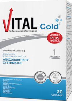 Vital Cold 20 lipid caps